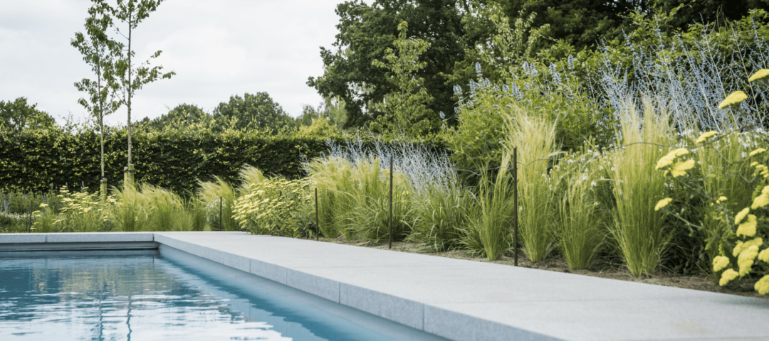 Wim Verrezen - Zwembad